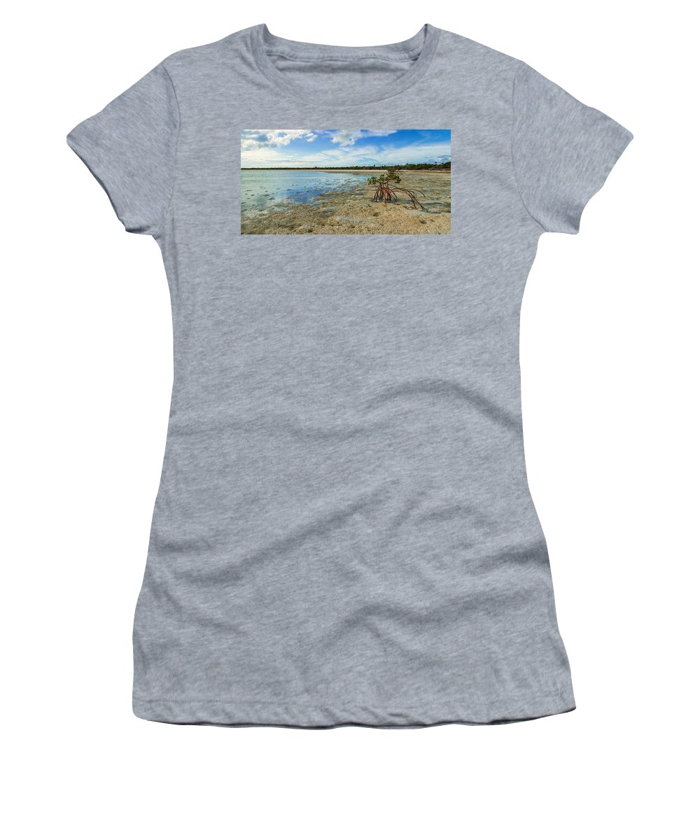 Caribbean Women's T-Shirt featuring the photograph Isolated by Chad Dutson