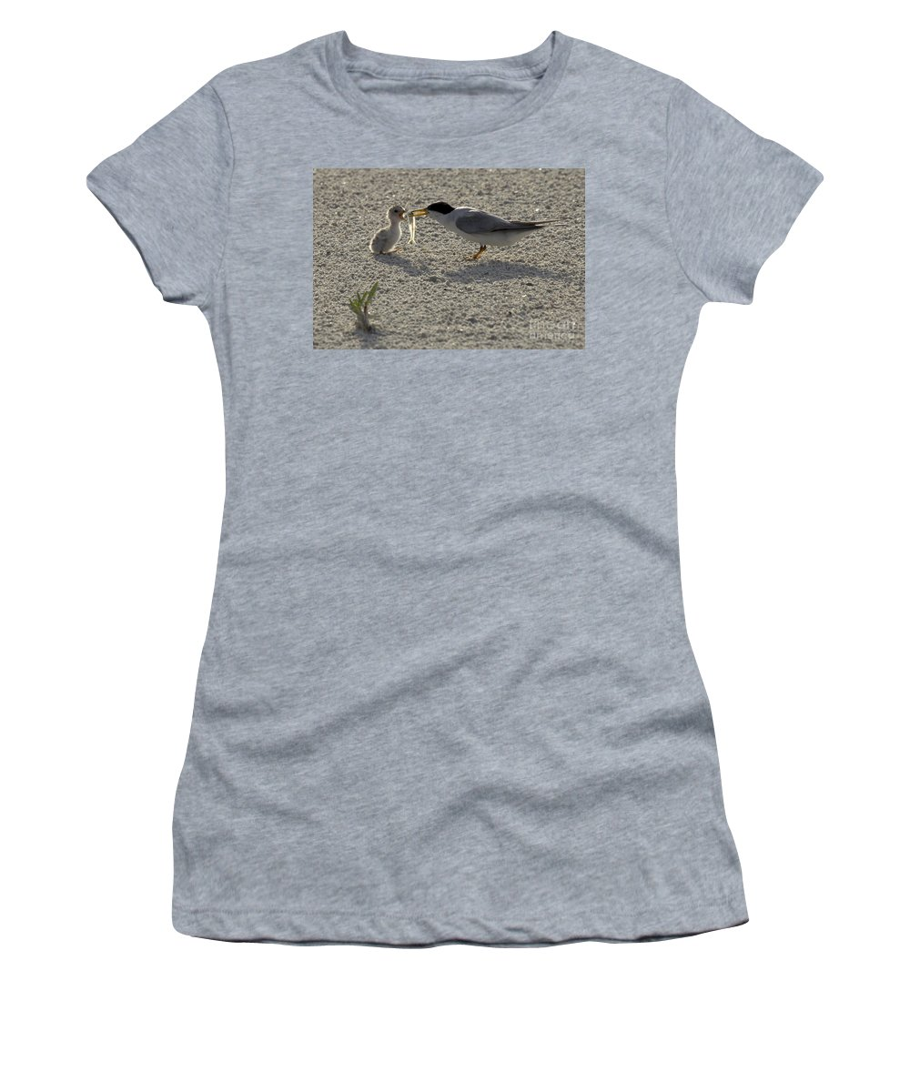 Least Tern Women's T-Shirt (Athletic Fit) featuring the photograph Least Tern Feeding It's Young by Meg Rousher