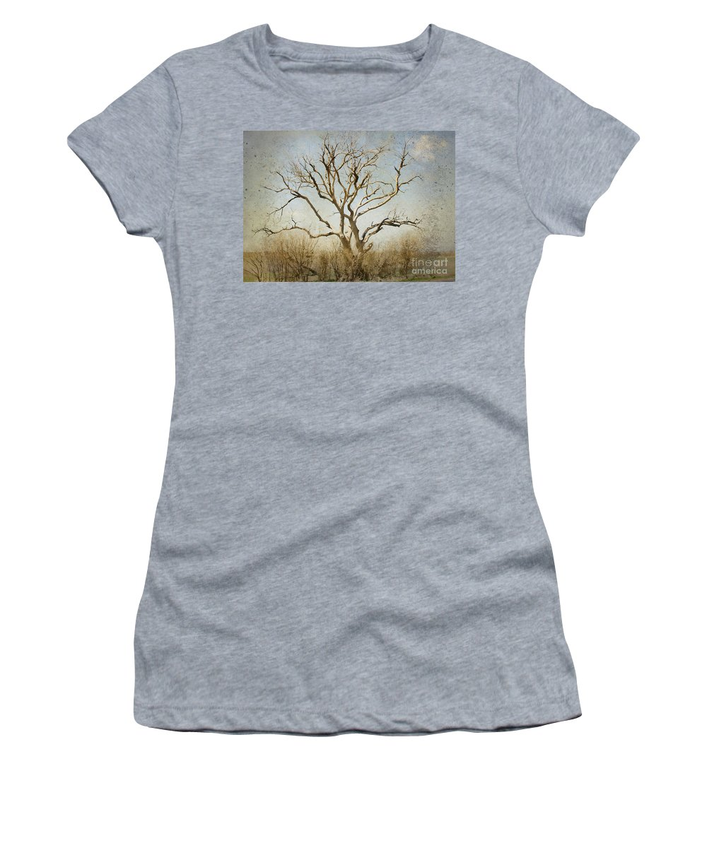 Tree Women's T-Shirt (Athletic Fit) featuring the photograph Lonely by Betty LaRue