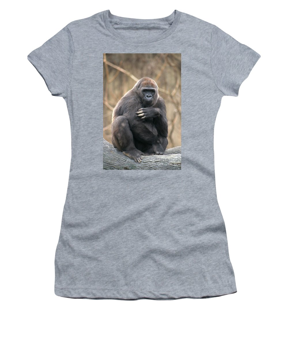 Gorilla Women's T-Shirt (Athletic Fit) featuring the photograph Lowland Gorilla by David Davis