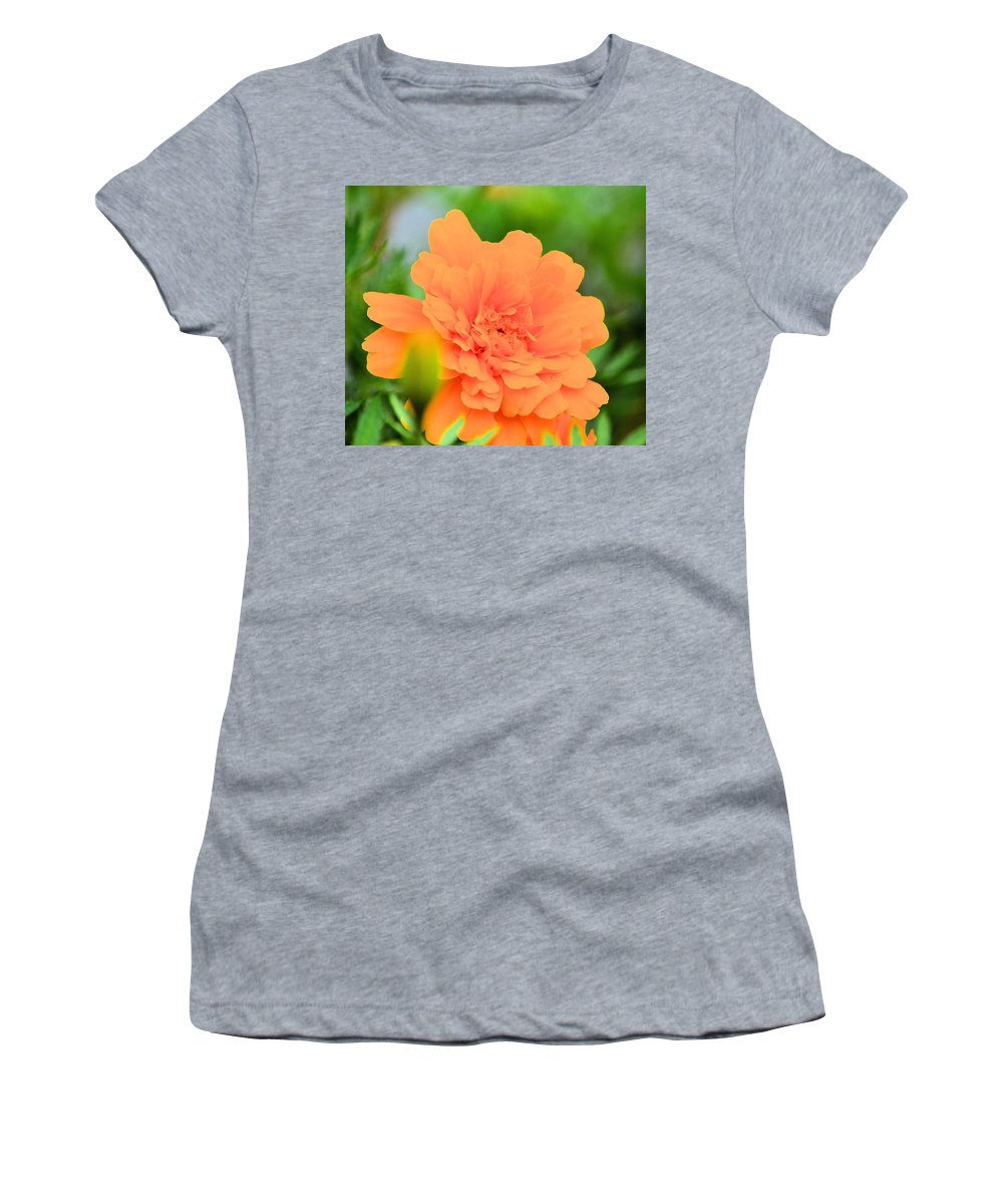 Marigold Women's T-Shirt (Athletic Fit) featuring the photograph Marigold by Maria Urso