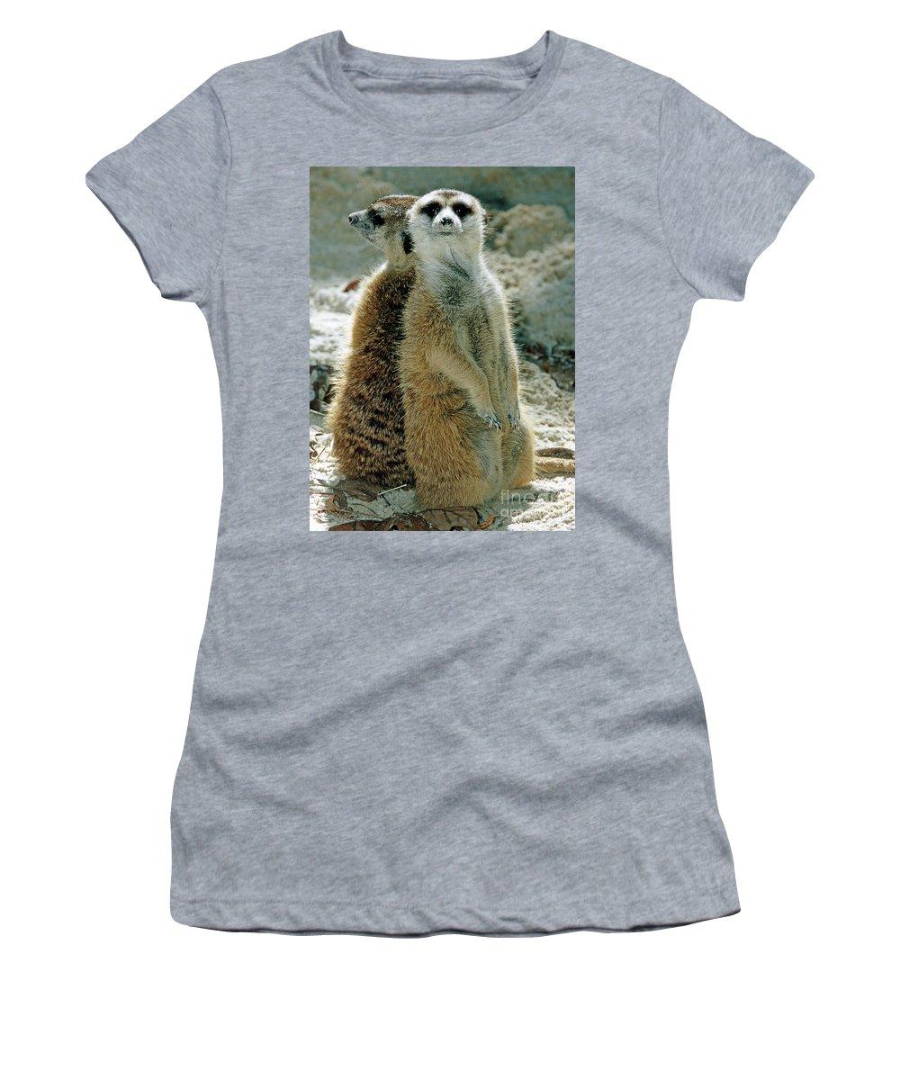 Animal Women's T-Shirt featuring the photograph Meerkats Suricata Suricatta by Millard H. Sharp
