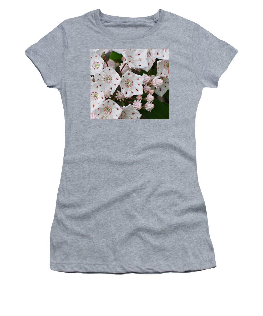 Mountain Laurel Women's T-Shirt featuring the photograph Mountain Laurel by MTBobbins Photography