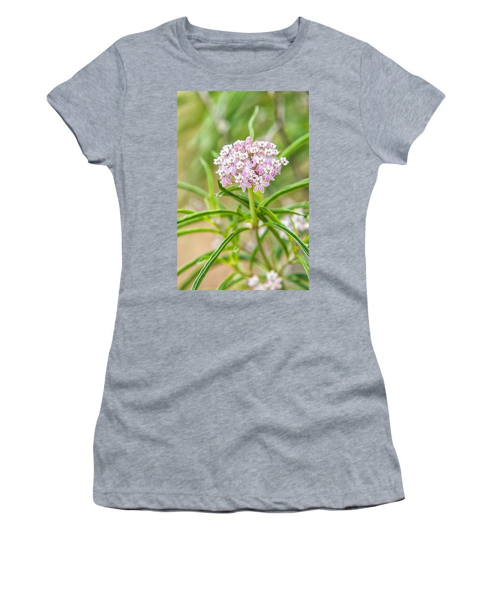 A. Fascicularis Women's T-Shirt (Athletic Fit) featuring the photograph Narrowleaf Milkweed by Rich Leighton