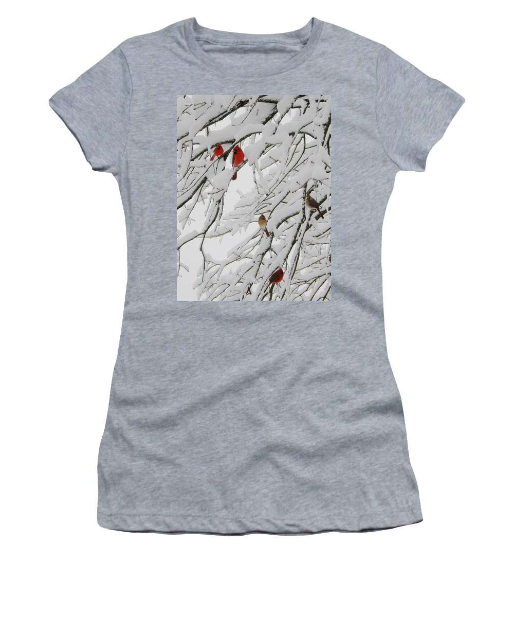 Red Birds Women's T-Shirt featuring the photograph Nature's Christmas Ornaments by Shannon Story