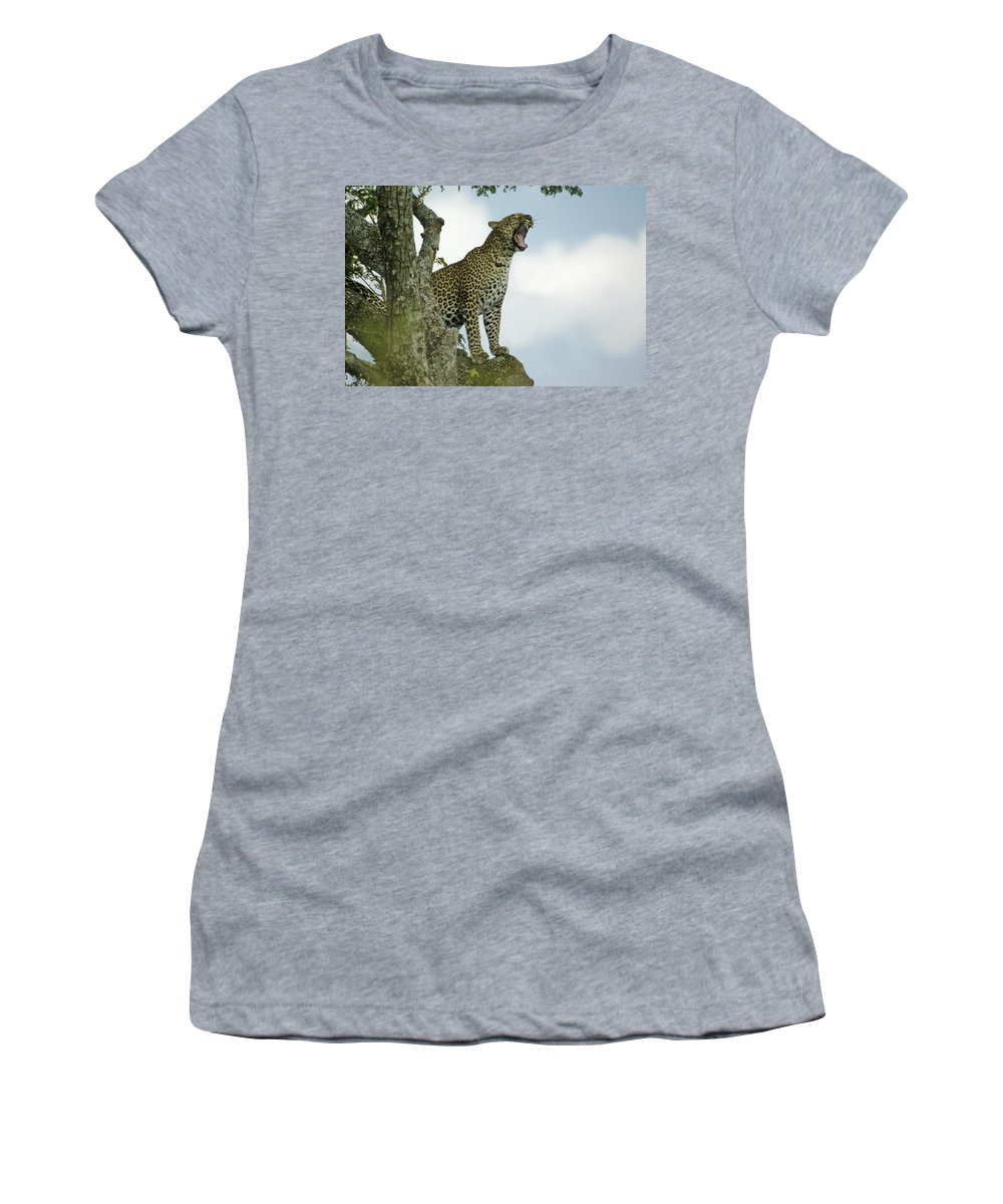 Africa Women's T-Shirt featuring the photograph Open Wide by Michele Burgess