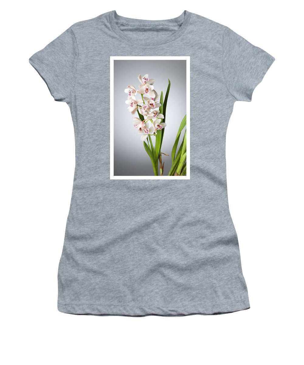 White Orchids On A Black Background Women's T-Shirt featuring the photograph Orchids 4 by Mauro Celotti