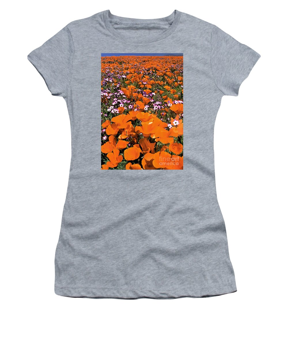 California Poppies Women's T-Shirt (Athletic Fit) featuring the photograph Panorama Califonria Poppies And Hollyleaf Gilia Wildflowers by Dave Welling