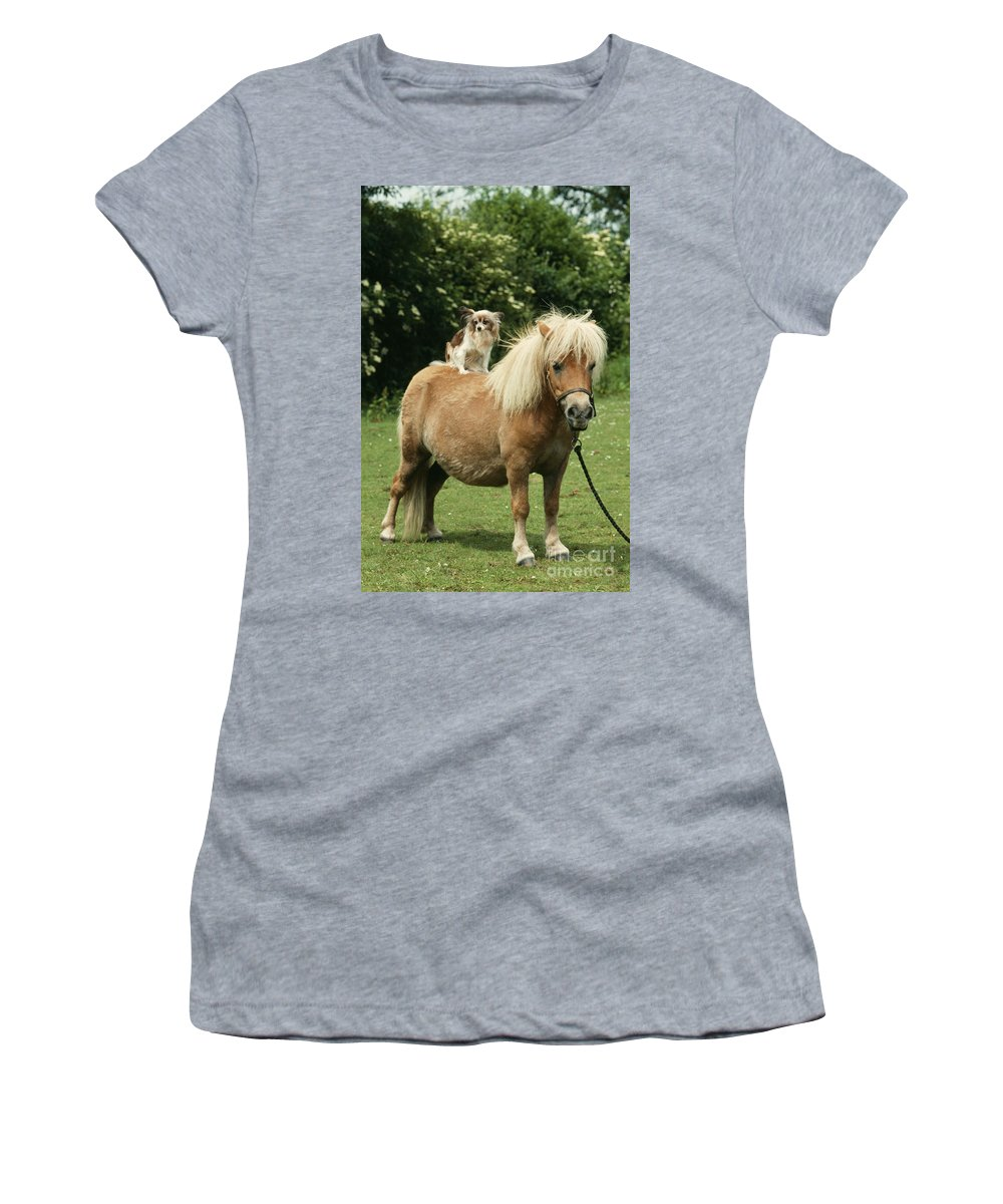 Horse Women's T-Shirt (Athletic Fit) featuring the photograph Papillon Riding Shetland Pony by John Daniels