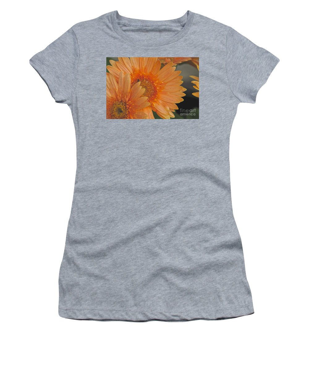 Peach Daisy Women's T-Shirt featuring the photograph Peach Daisy Cluster by William Norton