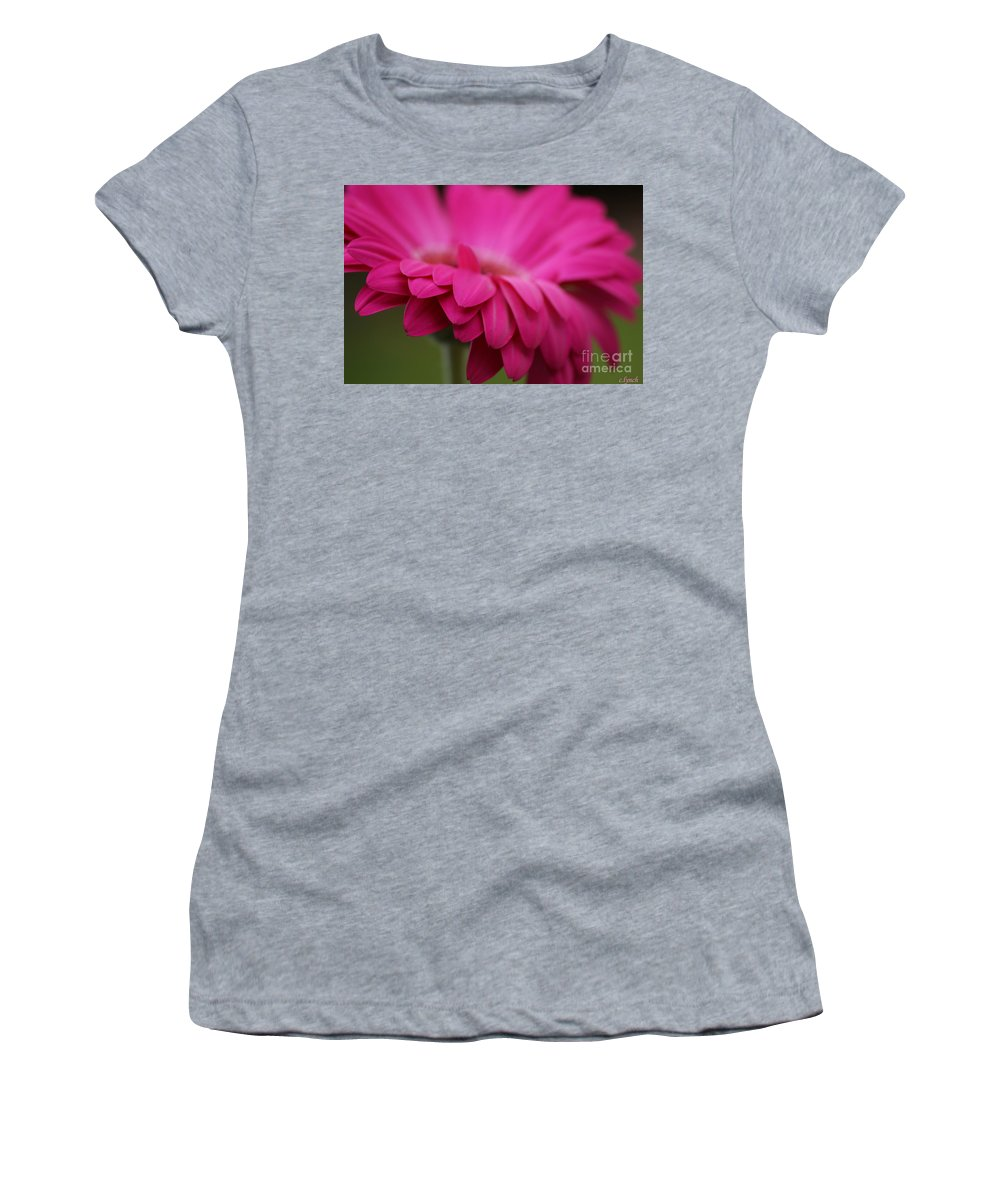 Pink Women's T-Shirt featuring the photograph Petals Pink by Carol Lynch