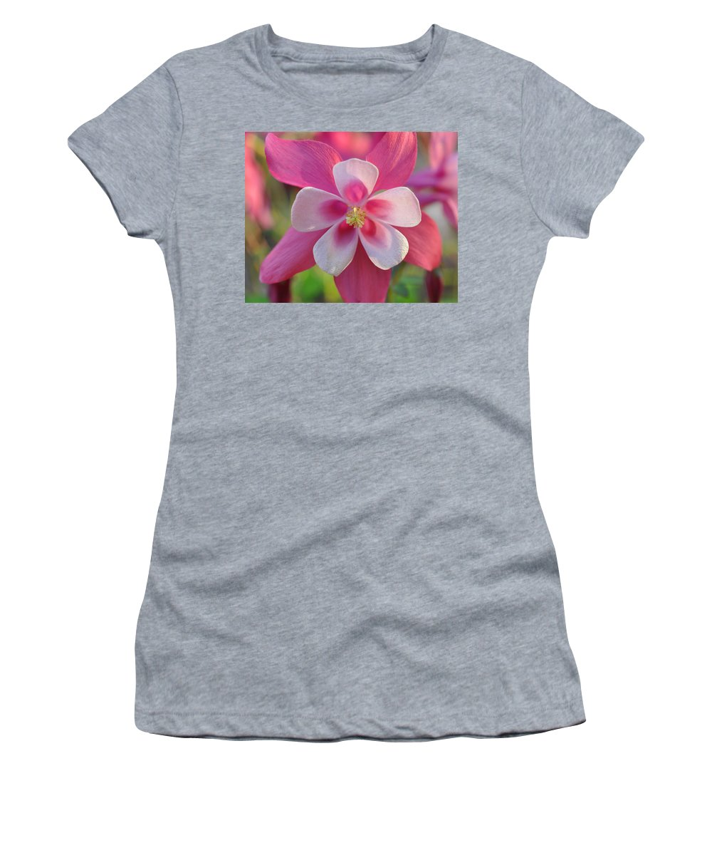 Spring Women's T-Shirt featuring the photograph Pink Columbine by Brittany Horton