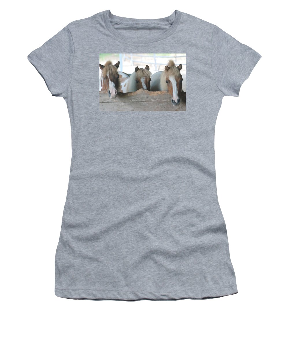 Pinto Women's T-Shirt (Athletic Fit) featuring the photograph Pinto Party by Amy Porter