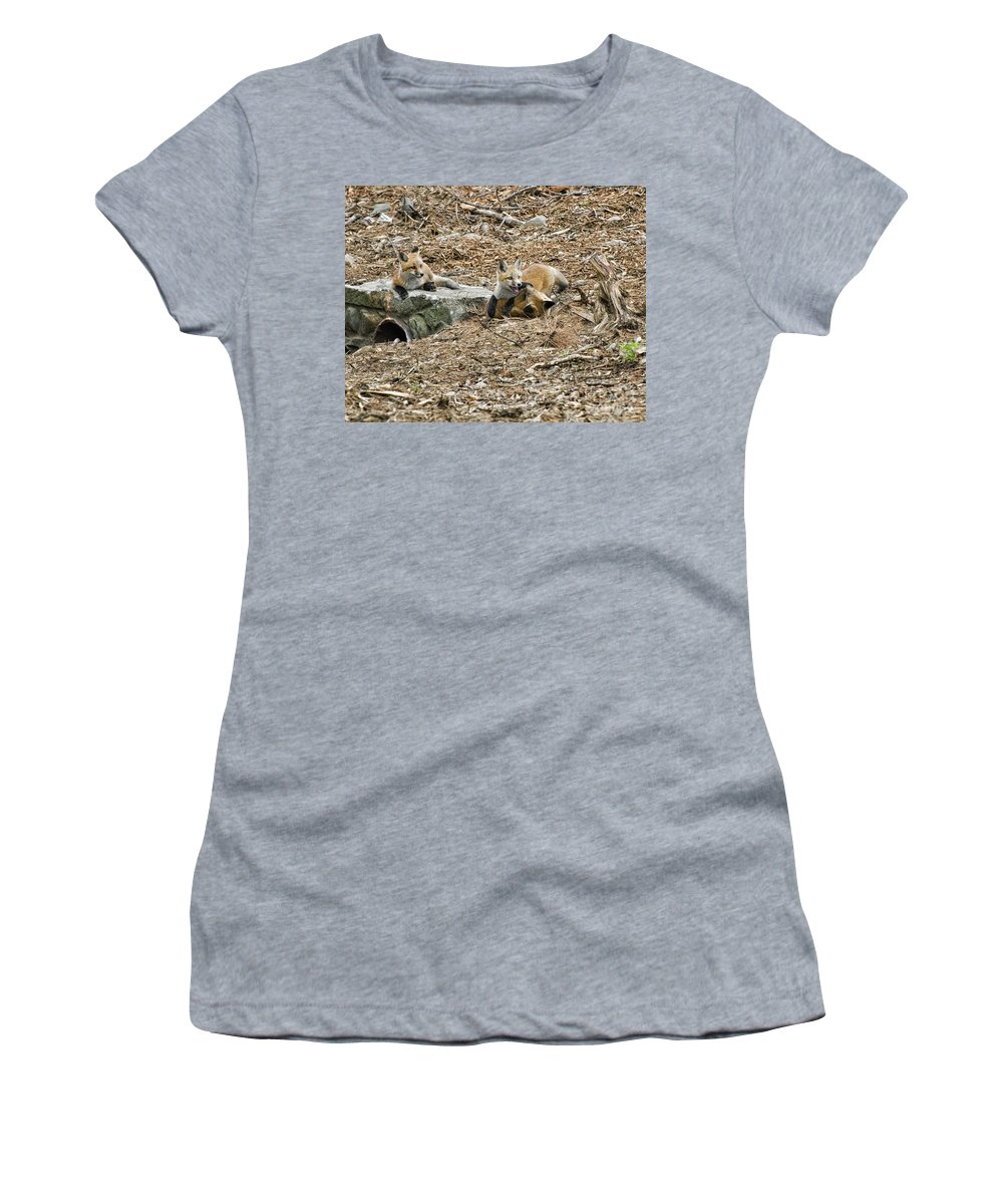 Foxes Women's T-Shirt (Athletic Fit) featuring the photograph Playing by Claudia Kuhn