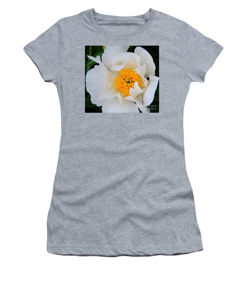Peony Women's T-Shirt (Athletic Fit) featuring the photograph Purity by Kathleen Struckle