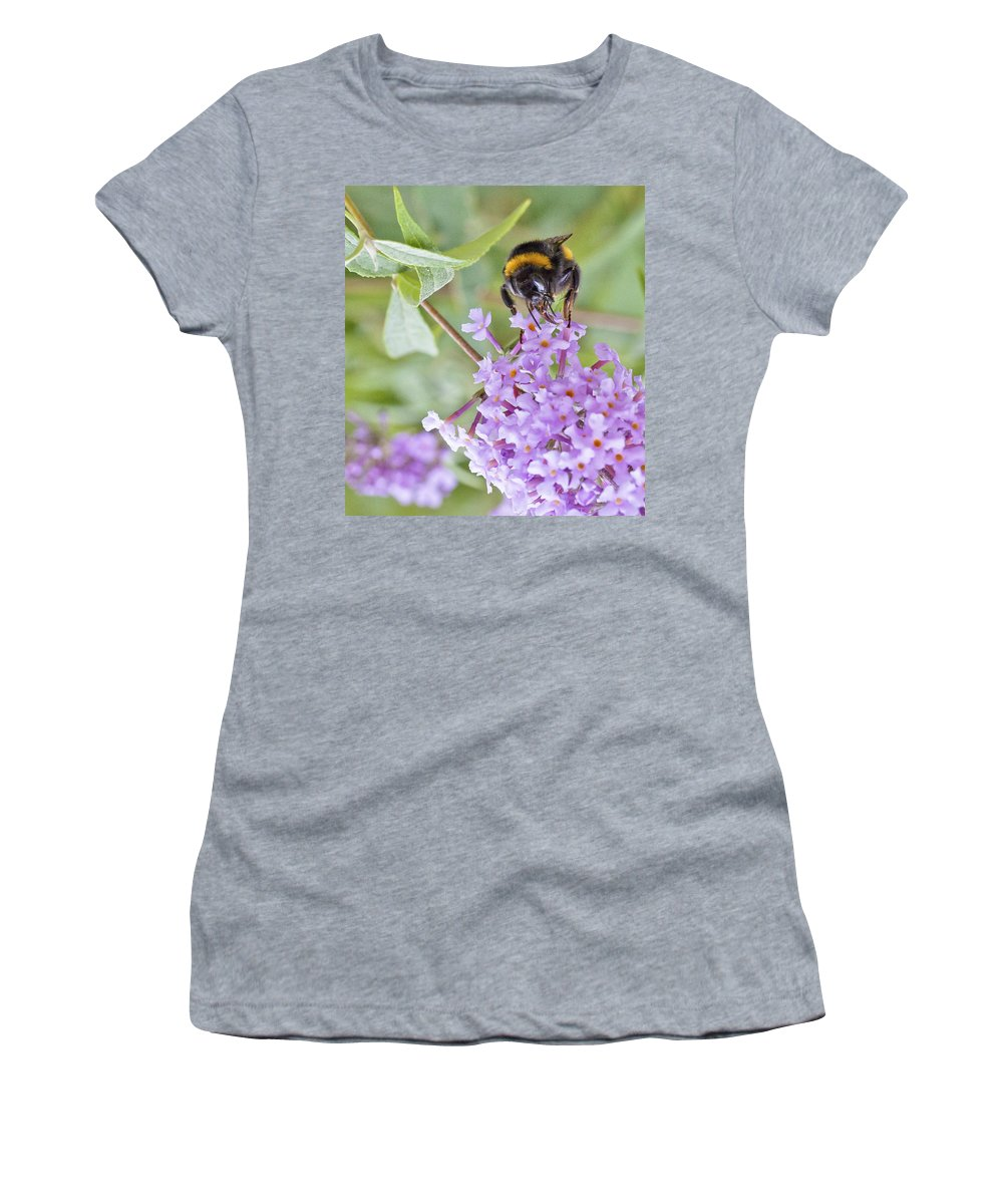 Bee Women's T-Shirt featuring the photograph Reaching For Nectar by Maj Seda