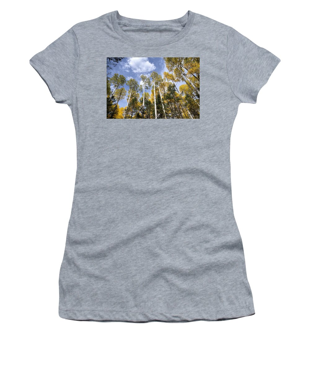 Fall Colors Women's T-Shirt featuring the photograph Reaching For The Sky by Saija Lehtonen