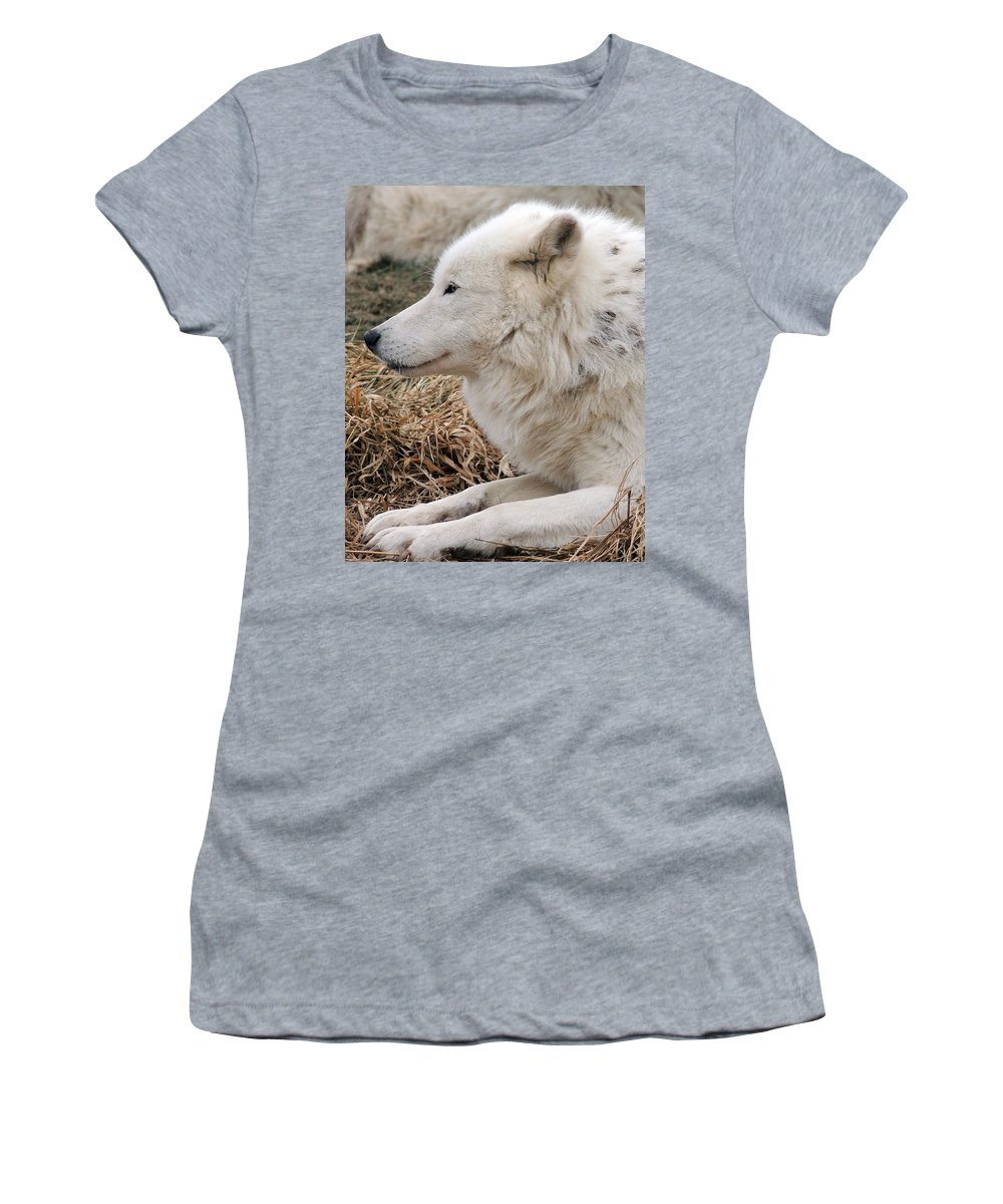 White Women's T-Shirt featuring the photograph Relaxing In The Afternoon by Munir Alawi