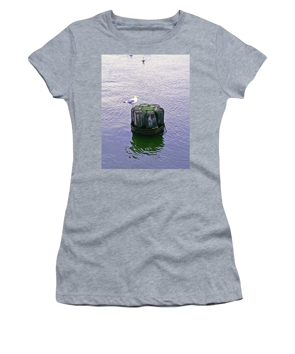 Seagull Women's T-Shirt featuring the photograph Rest Stop by Pablo Rosales
