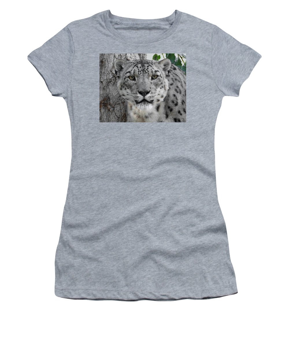 Animals Women's T-Shirt (Athletic Fit) featuring the photograph Snow Leopard 5 by Ernie Echols