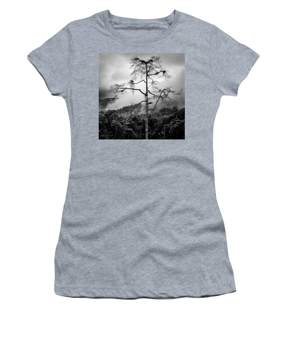 Cameron Highlands Women's T-Shirt (Athletic Fit) featuring the photograph Solitary Tree by Dave Bowman