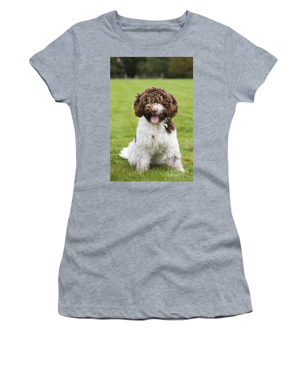 Spanish Water Dog Women's T-Shirt (Athletic Fit) featuring the photograph Spanish Water Dog by Johan De Meester