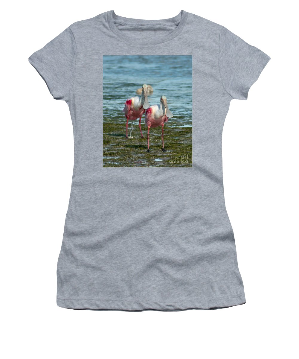 Spoonbills Women's T-Shirt featuring the photograph Spoonbills At The Shore by Stephen Whalen