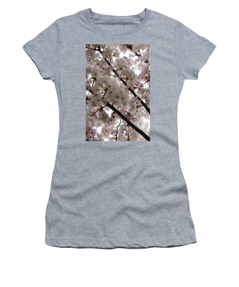 Beautiful Women's T-Shirt featuring the photograph Spring Is Beautiful - A Cloud Of Pastel Pink Blossoms by Georgia Mizuleva
