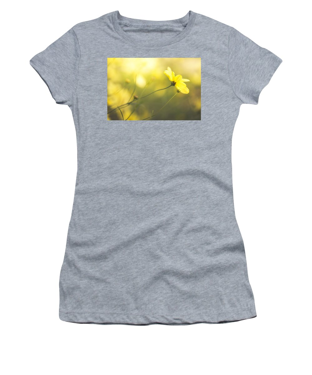 Flowers Women's T-Shirt featuring the photograph Summertime Warmth by Shane Holsclaw