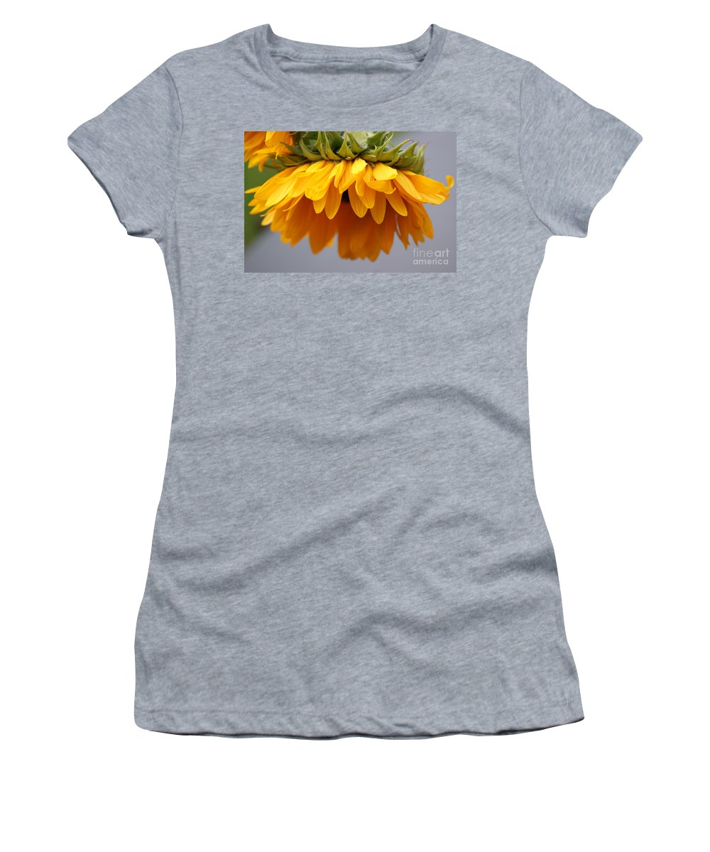 Sunflowers Women's T-Shirt (Athletic Fit) featuring the photograph Sunflowers 6 by Carol Lynch