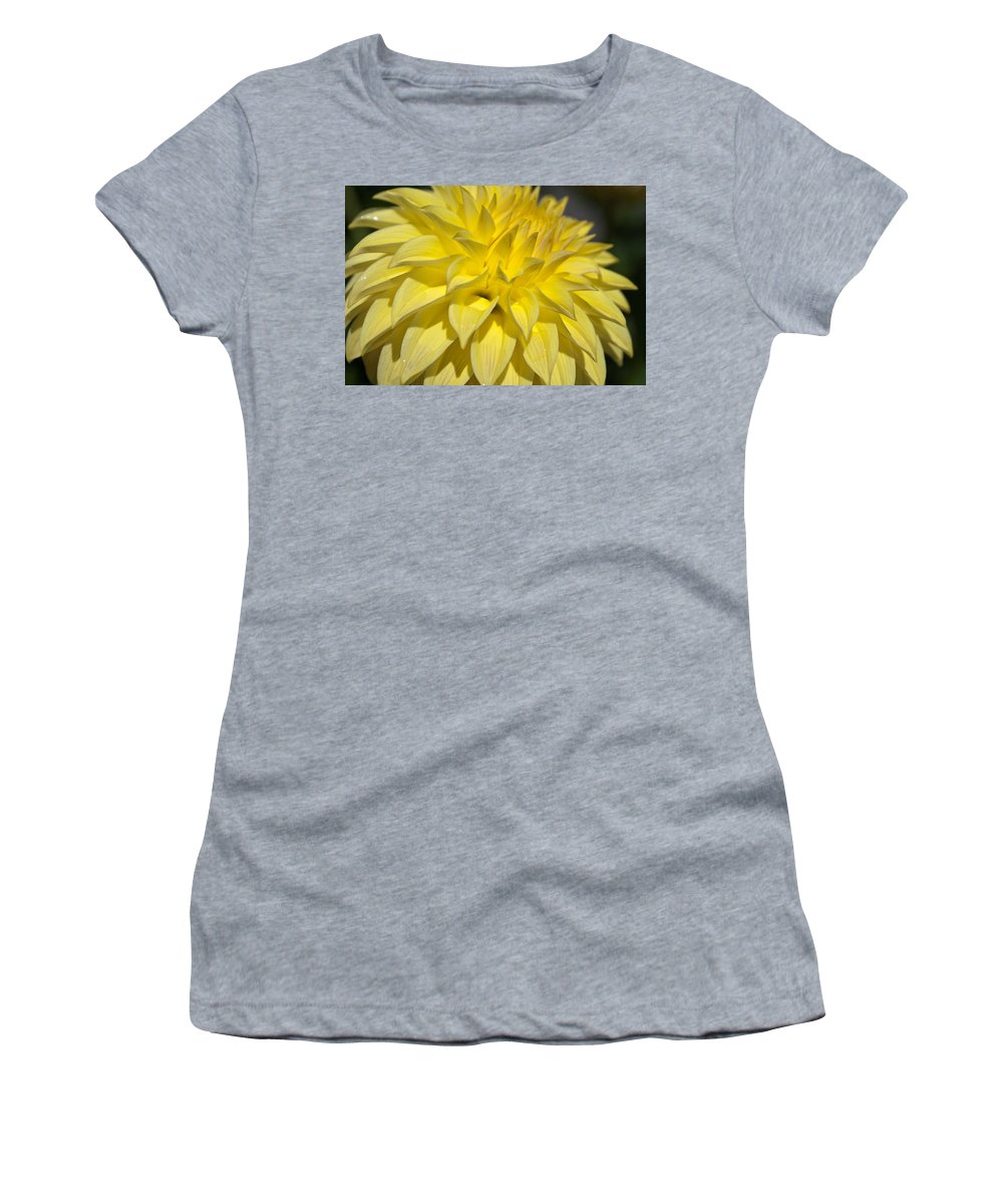 Sunshine Women's T-Shirt (Athletic Fit) featuring the photograph Sunshine Dahlia by Tikvah's Hope