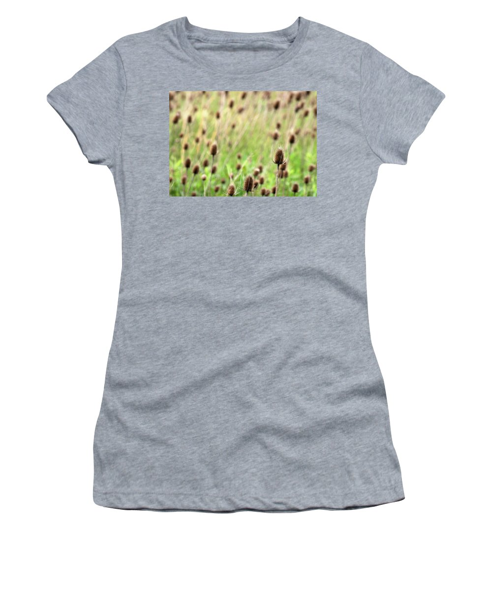Thistle Women's T-Shirt (Athletic Fit) featuring the photograph Teasel Meadow by Angela Rath