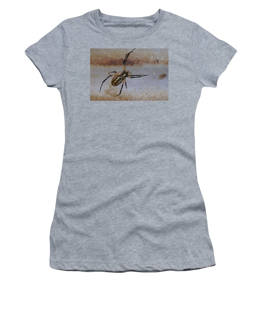 Texas Women's T-Shirt featuring the photograph Texas Barn Spider In Web 3 by Big E tv Photography
