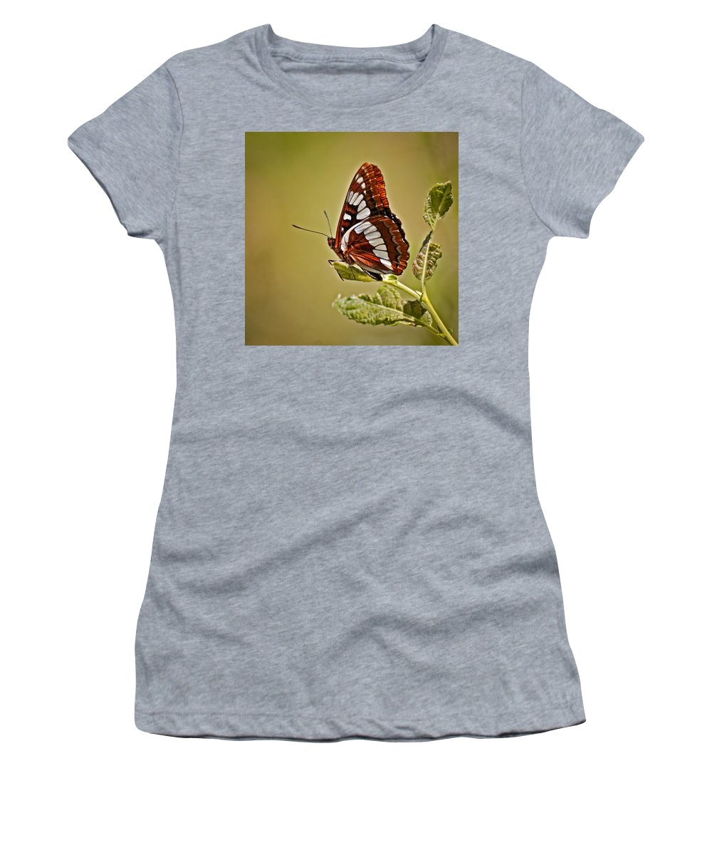 Bugs Women's T-Shirt (Athletic Fit) featuring the photograph The Butterfly by Ernie Echols