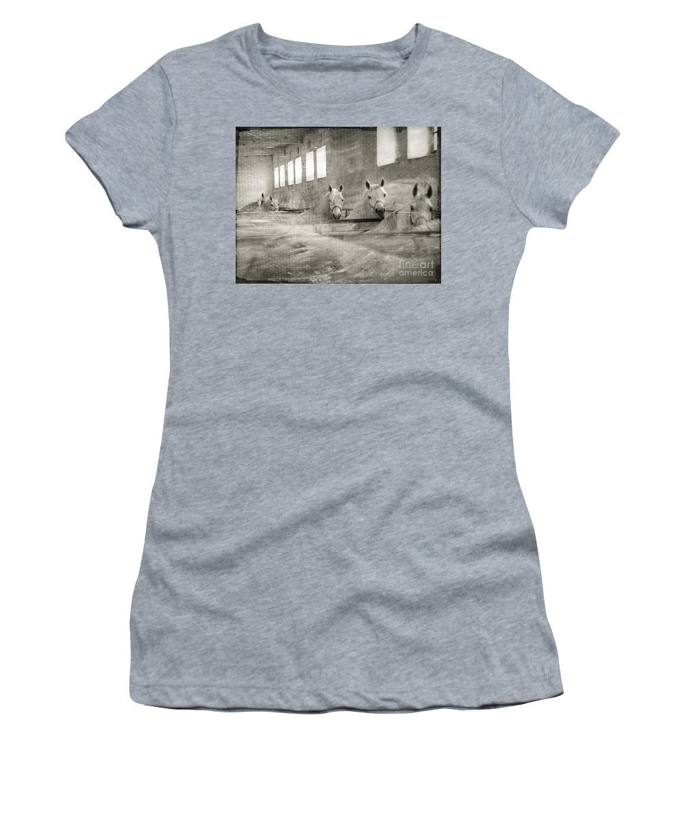 Grey Women's T-Shirt (Athletic Fit) featuring the photograph The Grey Mares by Angel Tarantella