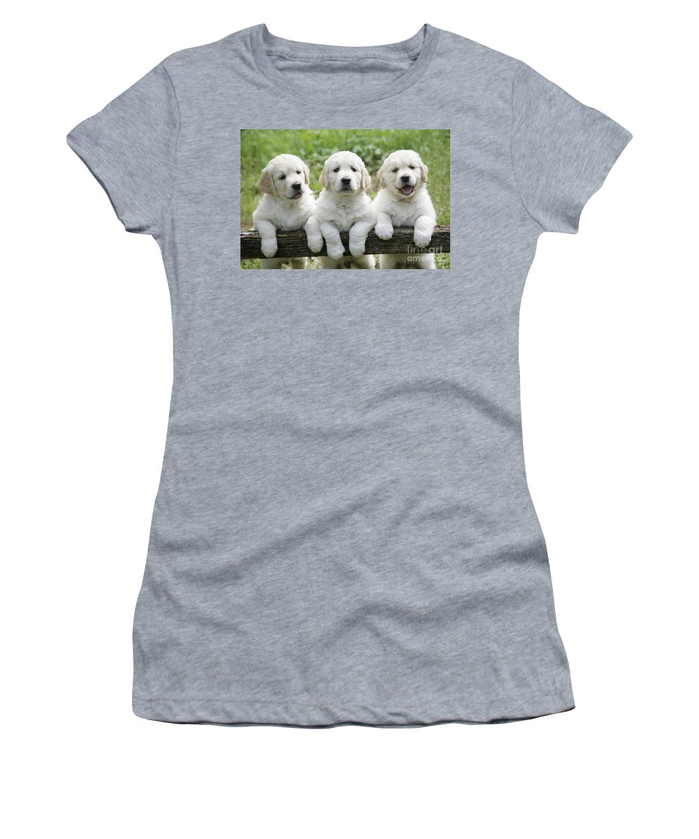 Three Women's T-Shirt (Athletic Fit) featuring the photograph Three Golden Retriever Puppies by John Daniels