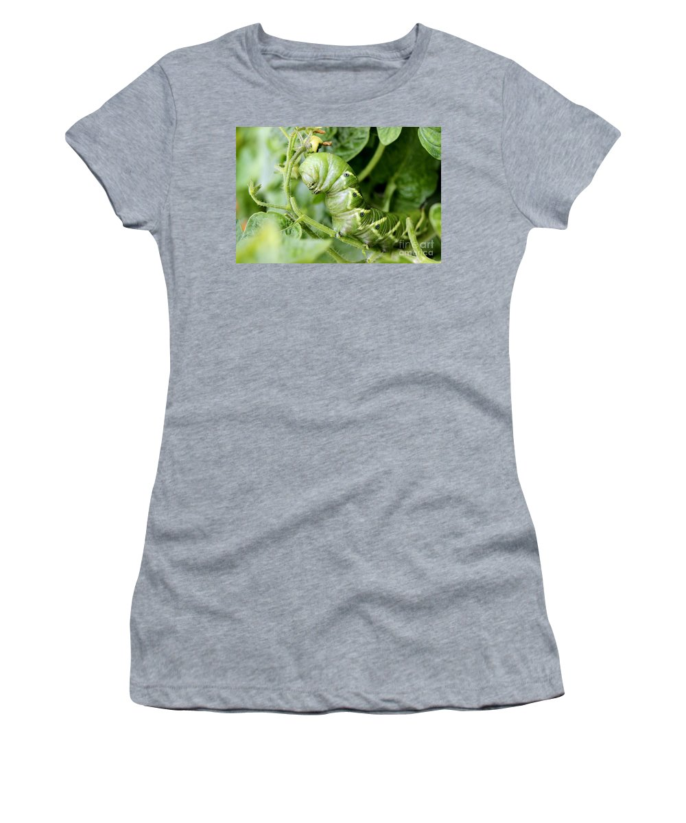 Tomato Women's T-Shirt (Athletic Fit) featuring the photograph Tomatoe Hornworm by Janice Byer