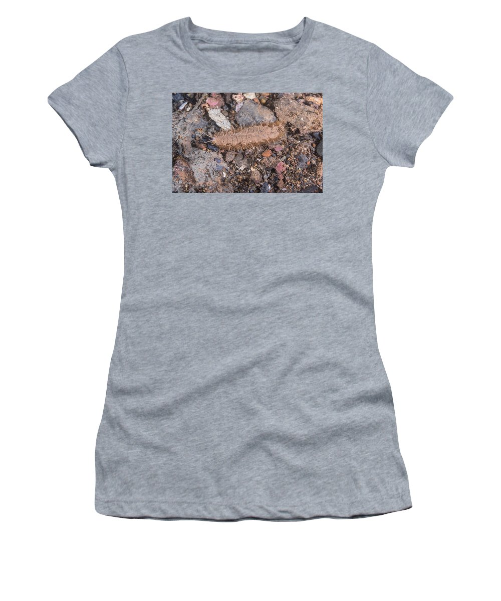 Twelve Scaled Worm Women's T-Shirt (Athletic Fit) featuring the photograph Twelve Scaled Worm by Andrew J. Martinez