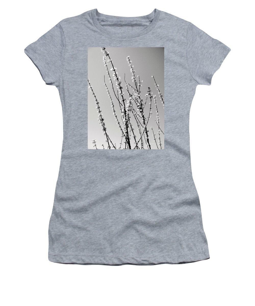 Twigs Women's T-Shirt featuring the photograph Twigs by Deborah Crew-Johnson