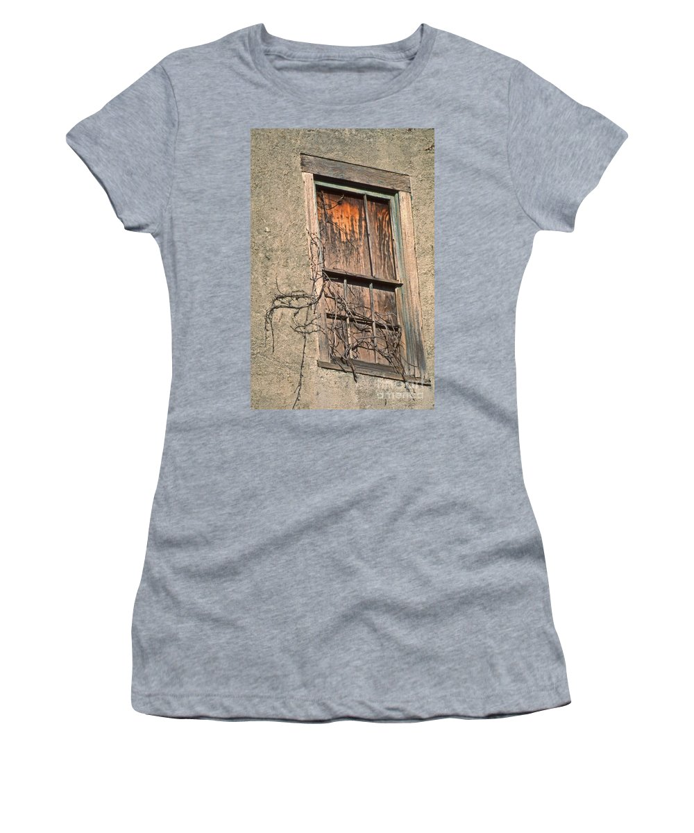 Scenic Tours Women's T-Shirt (Athletic Fit) featuring the photograph View From Without by Skip Willits