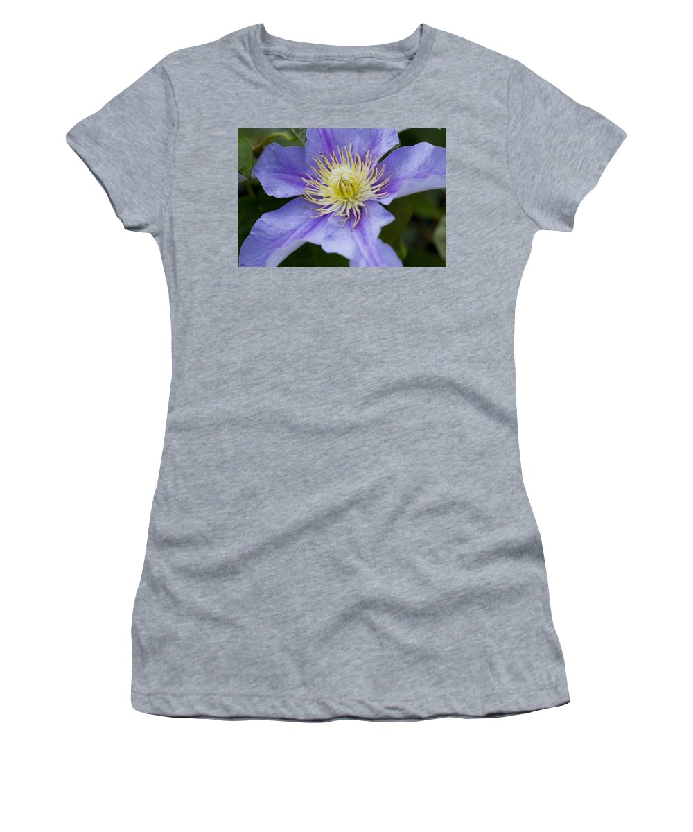 Rose Photographs Women's T-Shirt featuring the photograph Violet Morning by Vernis Maxwell