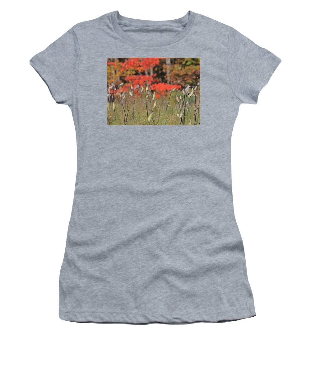 Wachusett Meadows Women's T-Shirt featuring the photograph Wachusett Meadows 4 by Michael Saunders