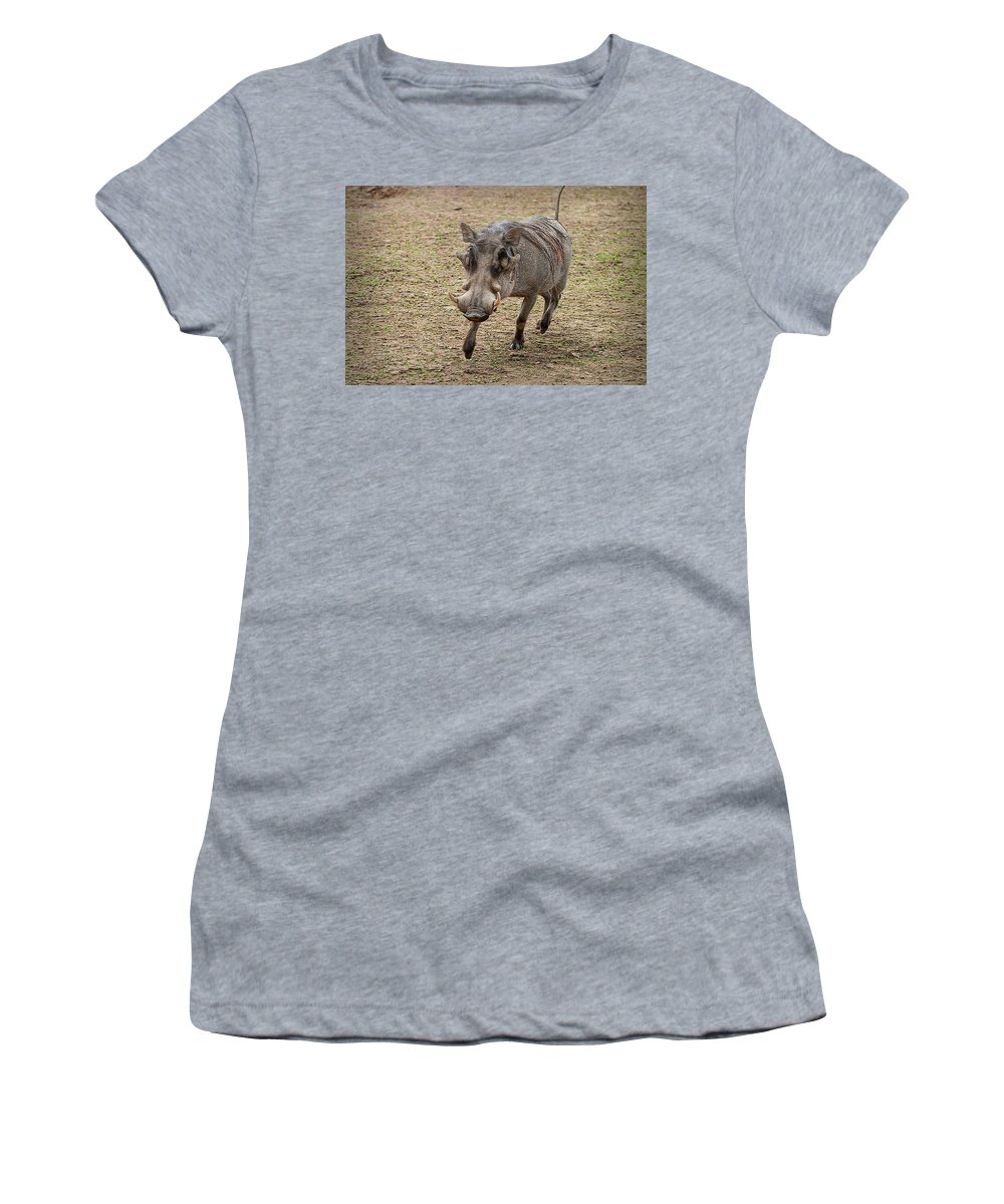 Warthog Women's T-Shirt featuring the photograph Warthog Approach by Photos By Cassandra