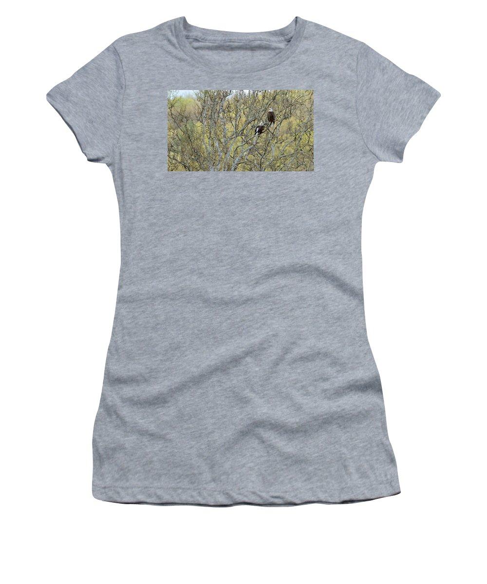 Bald Eagle Women's T-Shirt featuring the photograph Watchful by Ian Ashbaugh