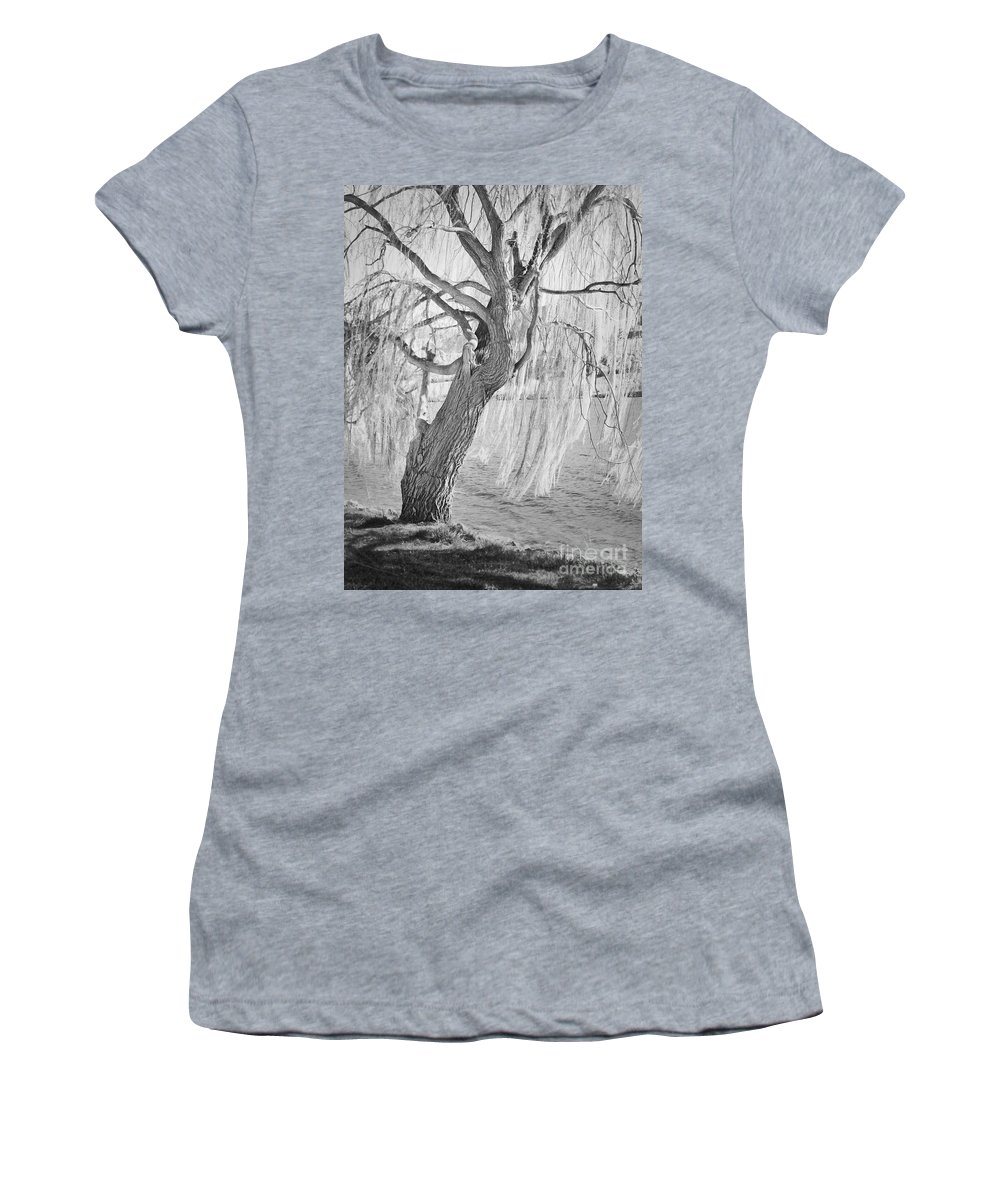 Tree Women's T-Shirt featuring the photograph Whiskey Lullabies by Andrea Goodrich