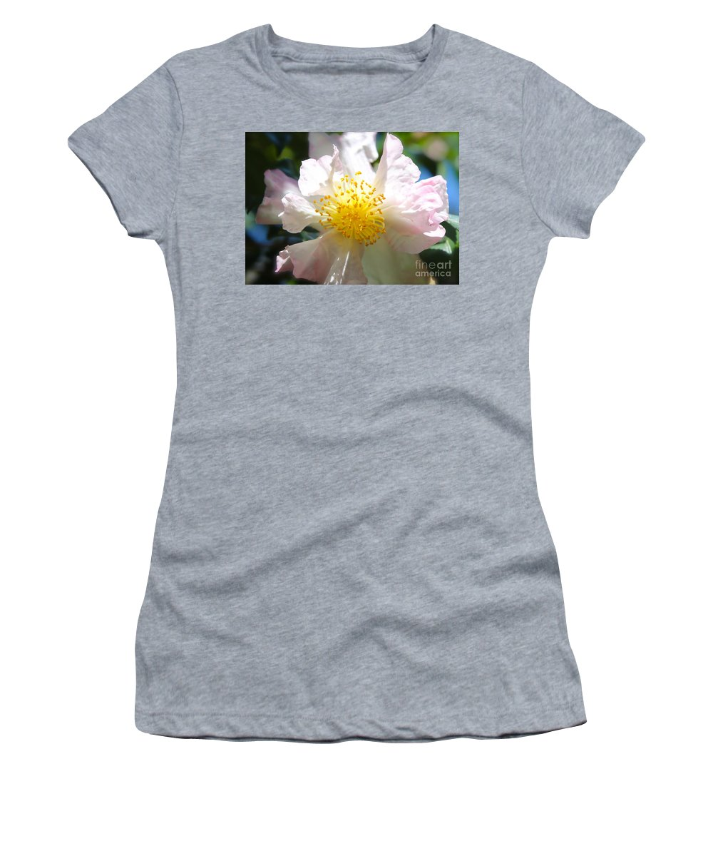 Camellia Women's T-Shirt featuring the photograph Winter Camellia by Carol Groenen