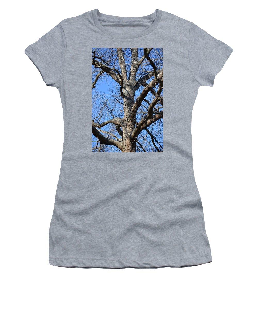 Winter Oak 2014 Women's T-Shirt featuring the photograph Winter Oak 2014 by Maria Urso