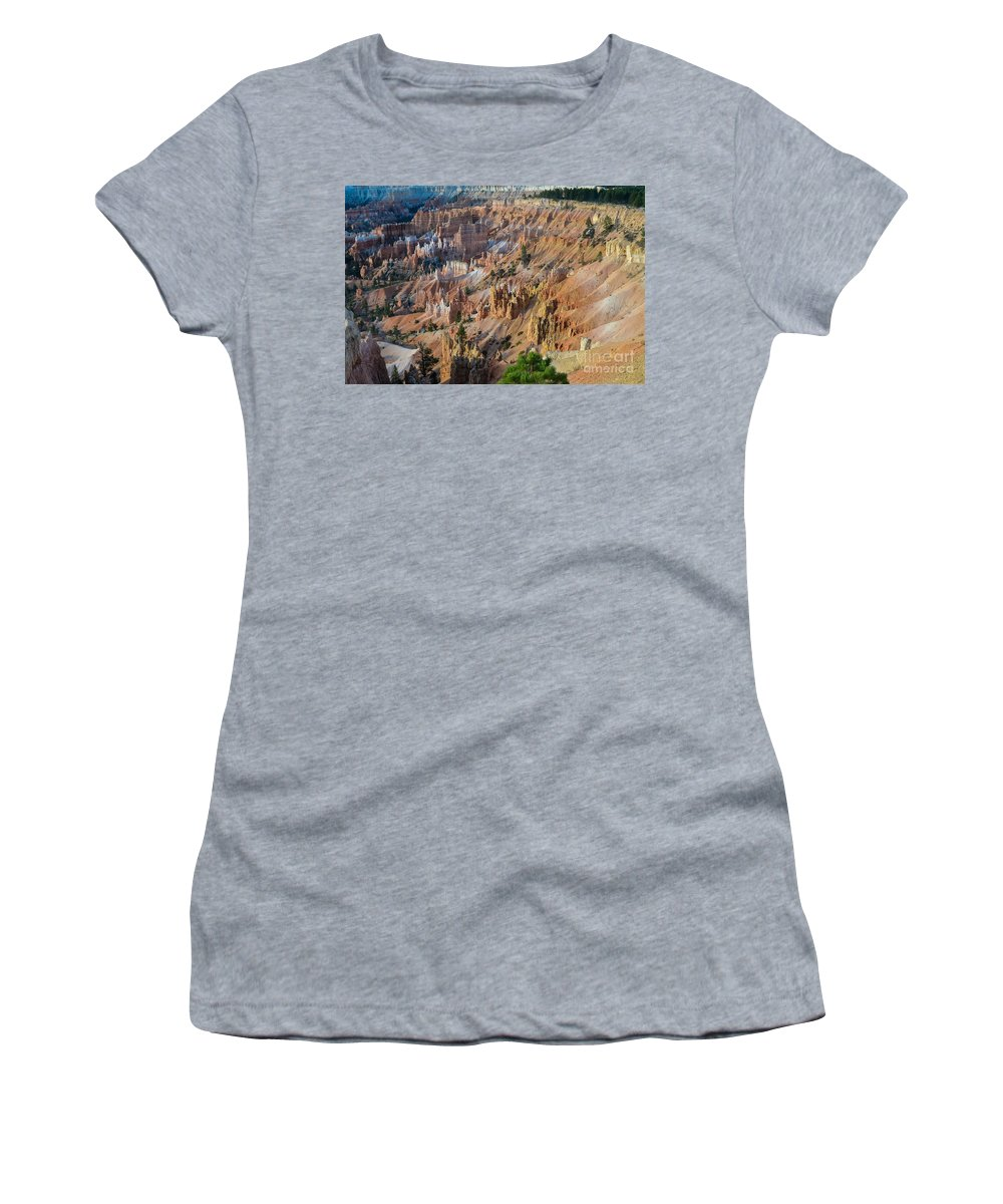 Brown Women's T-Shirt (Athletic Fit) featuring the photograph Years Of Wear by Rich Priest