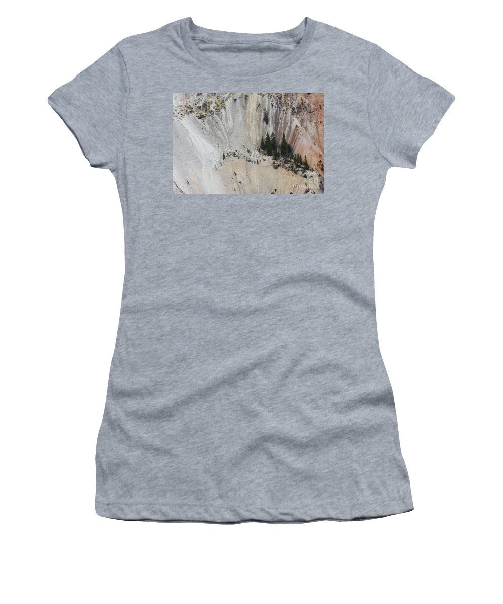 Yellowstone National Park. Trees Women's T-Shirt featuring the photograph Yellowstone National Park by John Greco