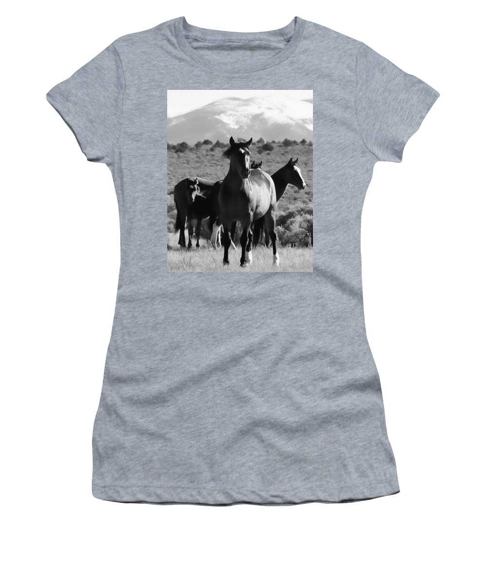 Horse Women's T-Shirt featuring the photograph The Family Wild by Terry Fiala